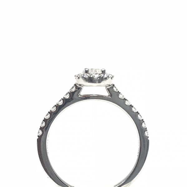 Engagement Rings - Oval halo with an oval center diamond - image #2
